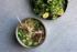 Photo culinaire de ramen à Genève